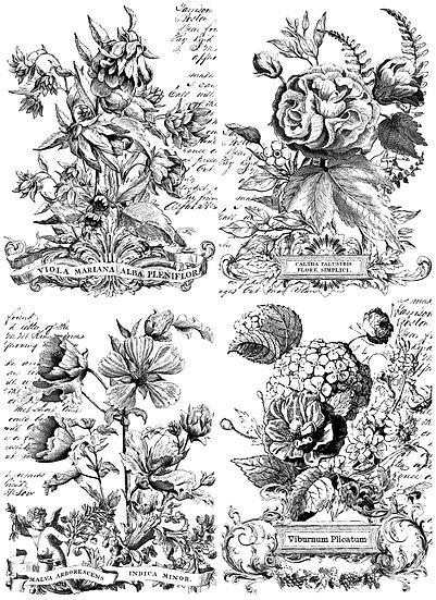 Classic Bouquets 24X33 PAINTABLE™ Decor Transfer