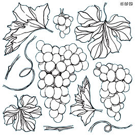 IOD-STA-GRAPES STAMPS.jpg