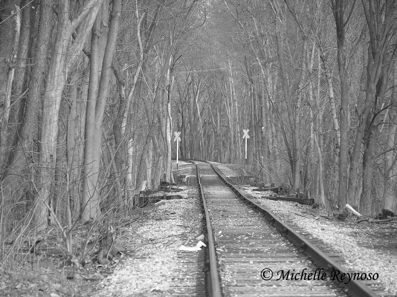 Black & White Railroad Tracks