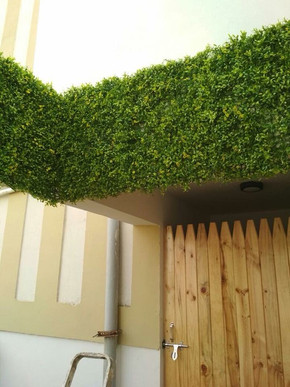 INTX Vertical Grass