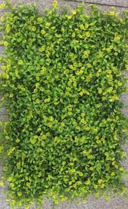 VERTICAL GRASS - 019
