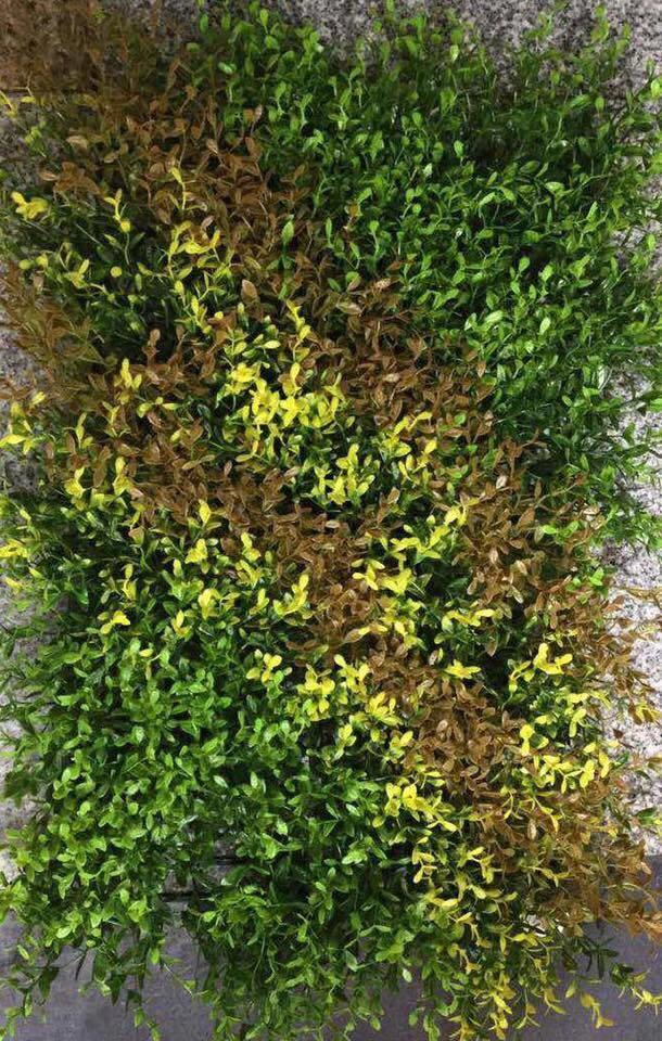 VERTICAL GRASS - 021