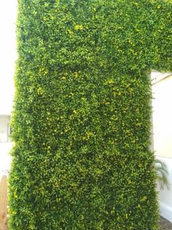 INTX Vertical Grass