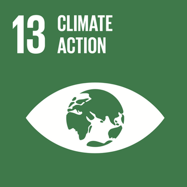 Goal 13: Ensuring a healthy and protected planet