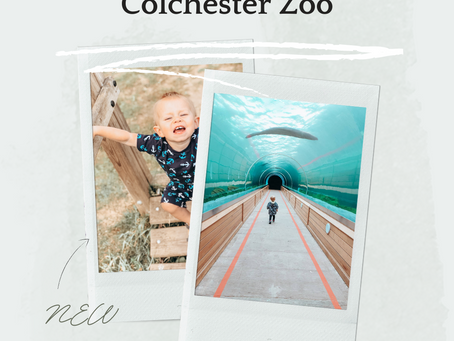 Visiting Colchester Zoo