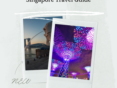 Travel With Children - Singapore
