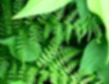 woven_crop.jpeg
