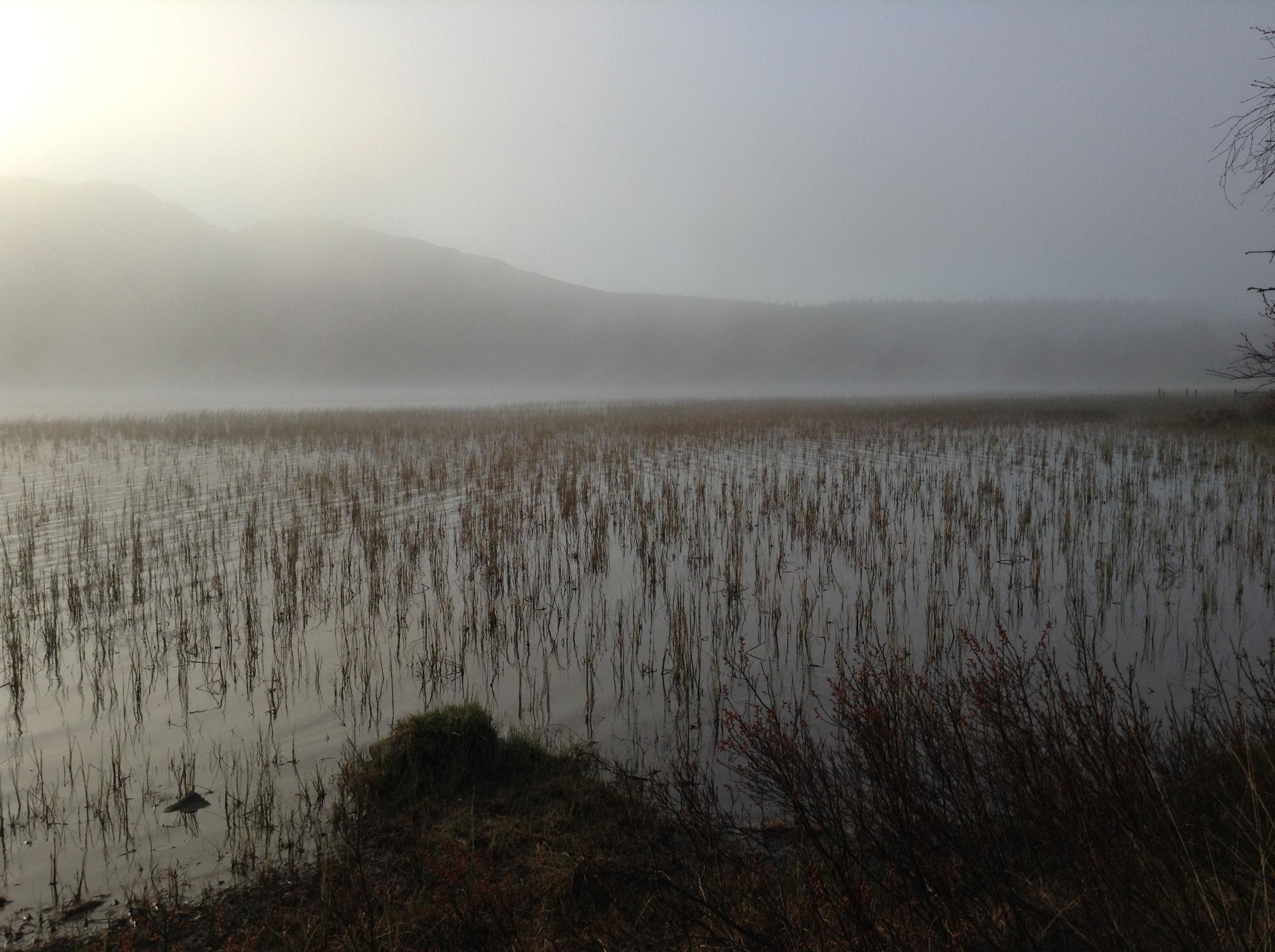 Loch Leathan at dawn