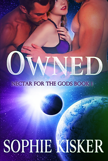 Final Owned ebook cover 500x747 4.24.20.
