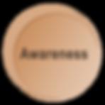 Awareness Circle.png