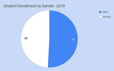 Student Enrollment by Gender -2019.png