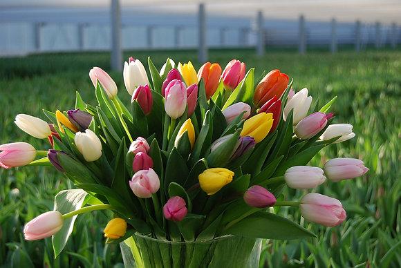 Blomprenumeration (En Månad)