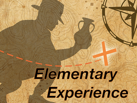Elementary Experience