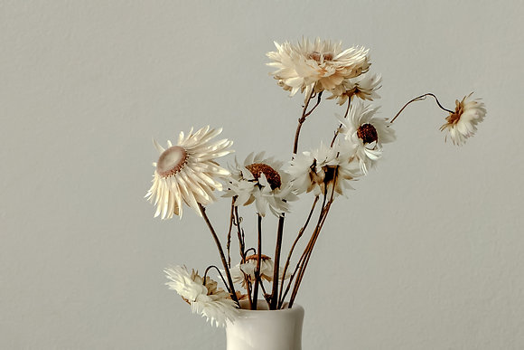 Set Wildflowers
