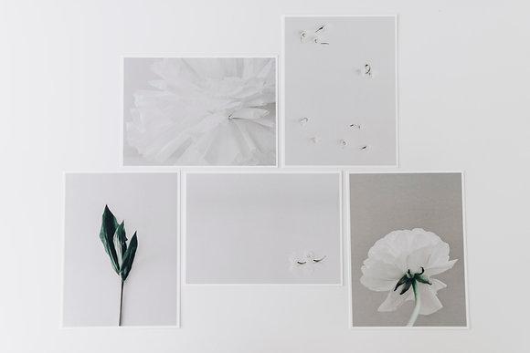 Set White & Green