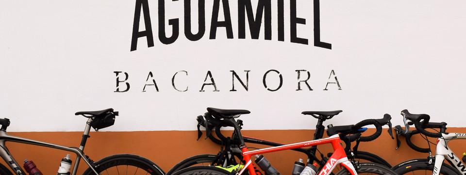 Ruta del Bacanora Aguamiel