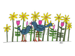 17-014 Two Birds