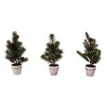 Mini Pine Trees - 30% off