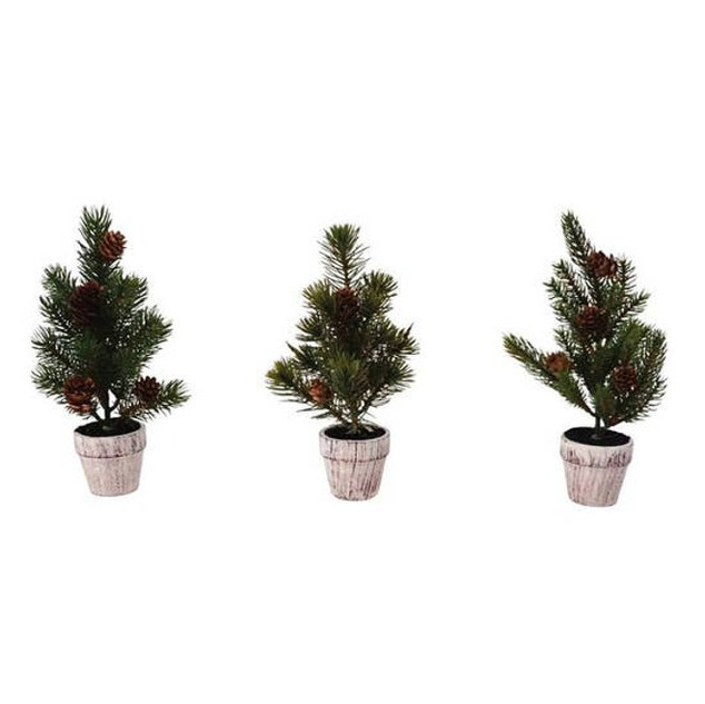 Mini Pine Trees - 30% off
