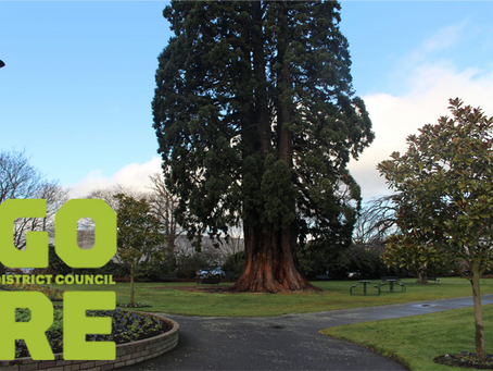Job Vacancy: Parks and Recreation Manager