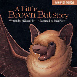 A Little Brown Bat Story (Signed Edition)