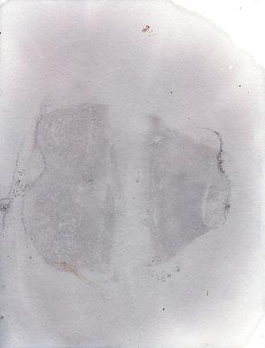 buv44.jpg
