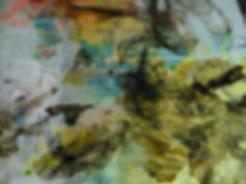 poulpe4.jpg