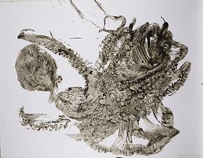 poulpe-11.jpg