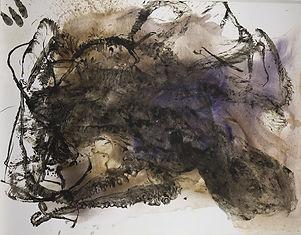 poulpe-25-1.jpg