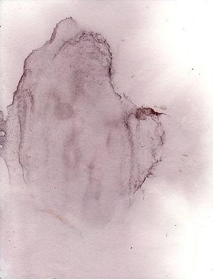 buv52.jpg