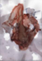 svc1.jpg
