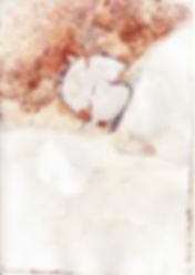 écrab67.jpg
