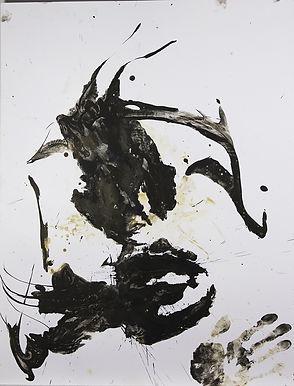 poulpe-3.jpg
