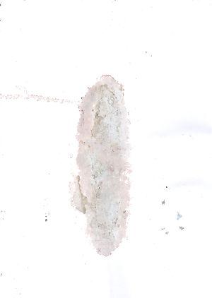 chairfa166.jpg