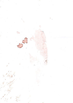 chairfa165.jpg