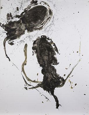 poulpe-14.jpg