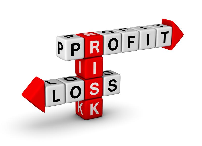 verifacto-profit-loss-image