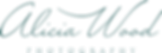 AW Logo Type Only Teal.png