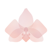 AW Logo Flower Pink.png