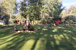 back yard 4.JPG