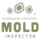 mold-inspector-2 (1).png