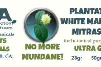 PLANTATION WHITE MAENG DA  MitraSpec