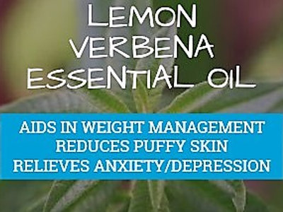 Lemon Verbena (Vervaine Aloysia citriodora) •100% Pure & Natural