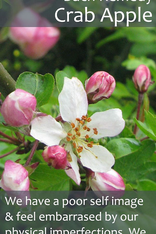 CRAB APPLE-Bach Flower Remedy