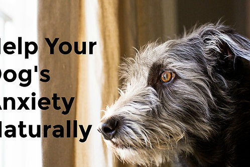 Aromatherapy Dog De-Stresser Spray