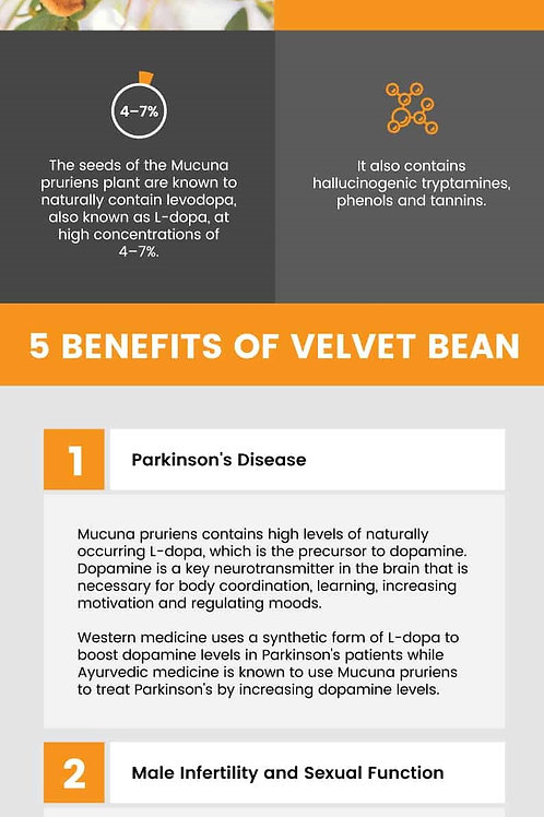 MUCUNA PRURIENS POWDER ~ Organic (the velvet bean)