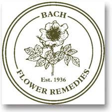 A guide to each of the 38 flower remedies discovered by Dr Bach.