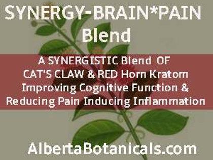 SYNERGY~ Brain Pain Blend
