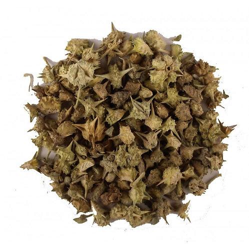 Tribulus Terrestris (Whole Dried) ~ Gokshura