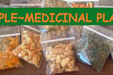 SAMPLE MEDICINAL PLANTS ~ Crazy Price (limited⏳time)